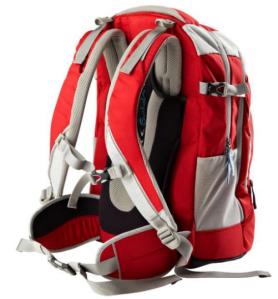 satch by ergobag - Schulrucksack für die weiterführende Schule - rot hellgrau